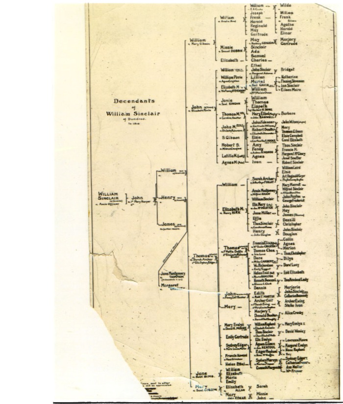 C -- Sinclair Family Tree 1920s